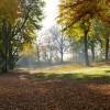 autumn-2923309_960_720